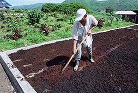 Tipos de fertilizantes, producción
