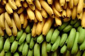 Tipos de frutas, maduración