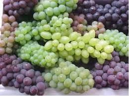 Tipos de vinos, fermentación