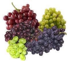 Tipos de uvas, variedades