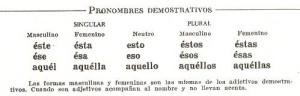 Tipos de pronombres, demostrativos