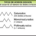Tipos de ácidos