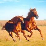 Tipos de caballos
