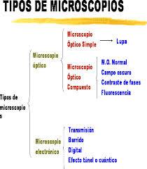 Tipos de microscopios, óptico