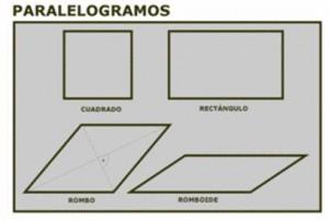 Tipos de cuadriláteros, paralelogramos