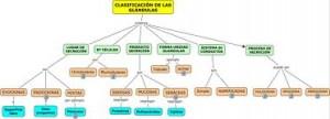 Clasificación de los Tipos de glándulas