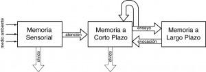 Otros Tipos de memoria: A largo plazo