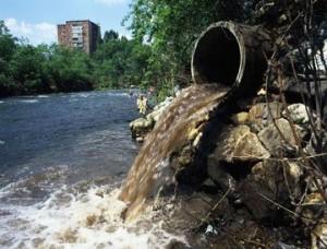 Tipos de contaminación del agua  Por compuestos orgánicos