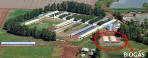 Tipos de energía renovable biogás
