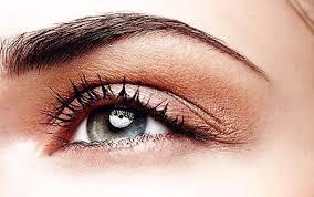 Tipos de cejas, función