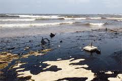 Tipos de residuos efectos en el mar