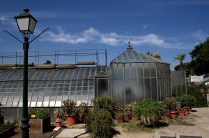 Tipos de invernaderos, doble capilla