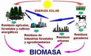 Tipos de energía renovable de biomasa